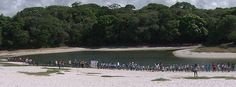 G1 - Salvador - Parque Lagoa do Abaeté -Cantada em verso e prosa pelos poetas da música baiana, a Lagoa do Abaeté é um dos cartões-postais de Salvador. Com águas escuras, rodeadas por um vasto areal branco, a paisagem tem o contraste aguçado pelo azul do céu de nuvens brancas e os raios de sol.