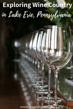 Come visit Lake Erie Wine Country with Ohio Girl Travels as she stops at wonderful wineries along the way. Enjoy an afternoon lunch with a glass of wine. Travel Usa, Travel Tips, Erie Pennsylvania, Great Lakes Region, Relaxing Day, Lake Erie, Wine Country, Wine Tasting, Travel Inspiration