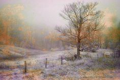 """Mountain Mist II"" by Fine Art America Artist William Beuther"