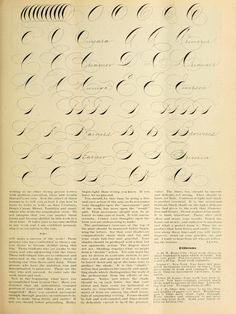 Calligraphy Fonts Alphabet, Copperplate Calligraphy, Lettering Guide, Calligraphy For Beginners, Stationary, Writing, Business, Crafts, Hand Written
