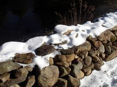 How to Build a Stone Fence in 8 Steps