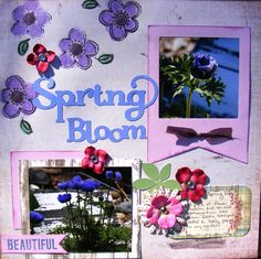 Spring Bloom - Scrapbook.com