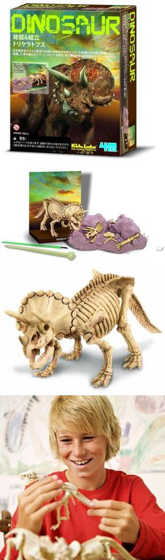 Animals and Nature 31744: 4M Kidz Labs Dig A Dinosaur Triceratops -> BUY IT NOW ONLY: $33.58 on eBay!