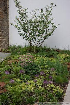 5 Culture Chanel Exhibit, The Garden // The Palais de Tokyo, Paris // Designer: Piet Oudolf // Images: 2013 Adam Woodruff + Associates Woodland Plants, Summer Plants, Paris Design, Art Pictures, Garden Plants, Garden Landscaping, Perennials, Garden Design, Exhibit