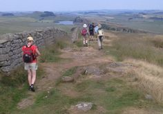 Homepage - Shepherds Walks Holiday, quality walking holidays in Northumberland