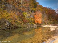 Ozark County, Missouri  Just across the Arkansas/Missouri state line is the beautiful area called Ozark County. There are many good paved and gravel roads to spot foliage along small creeks.