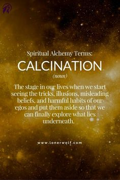Ages Of Enlightment The Ascension Reiki, C G Jung, Gewichtsverlust Motivation, Business Motivation, Word Of The Day, Spiritual Quotes, Enlightenment Quotes, Spiritual Power, Spiritual Thoughts