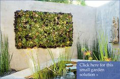 Los Angeles garden collage of succulents on the wall by landscape designer Mia Lehrer and her associate, Holly Kuwayama, was to hang a garden on the wall, a leafy Read articl!