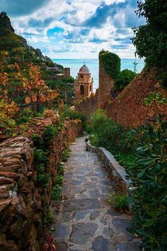 Stone Path, Cinque Terre, Italy  (From Beautiful Amazing World)
