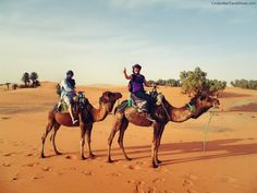 We in Camel Caravan in Sahara desert in Morocco