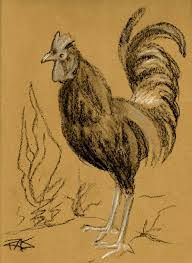 Image result for charcoal chicken sketches