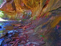 West fork of Oak Creek near Sedona, AZ