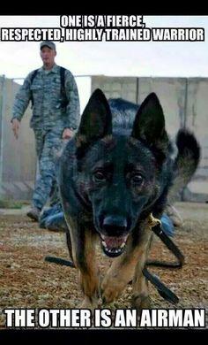 German Shepherd Military War K9 Hero! May God Bless you!