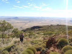 On the way to the summit of Mount Woodroffe, South Australia's tallest mountain and a very important part of Aboriginal culture South Pacific, Pacific Ocean, South Australia, Australia Travel, Aboriginal Culture, Papua New Guinea, New Zealand, Grand Canyon, Mountain
