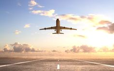 Donald Strachan, Telegraph Travel's technology expert, compares the leading   flight search websites to discover which finds the cheapest deals