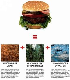 This is why a meat-eating enviornmentalist is an oxymoron. Animal products production = waste of plant life and water.