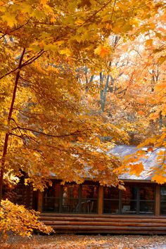 Don't let the season slip by! Check out our optimal camping spots to enjoy the peak foliage in northern, central and southern Wisconsin.