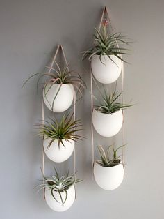 Leather or lace? How about leather and porcelain? These are so gorgeous.   #hangingplanters #coolplanters