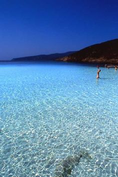 Look how clear and beautiful the water is in Asinara, Sardinia, Italy
