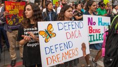 Federal judge orders the Trump administration to fully restore DACA Alone, Donald Trump, Dream Act, Museum Studies, By Any Means Necessary, Illegal Aliens, Immigration Policy, American Freedom, Aleppo