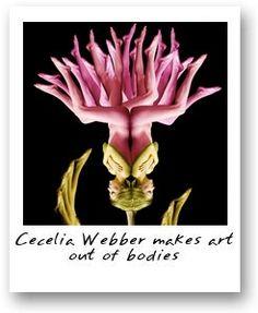 Marcia Batoni - Artes Visuais: *Cecília Webber - Corpos em Flor