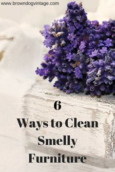 Don't pass up that great piece of furniture just because it reeks! See 6 easy and cheap ways to get those gross smells out of old furniture!