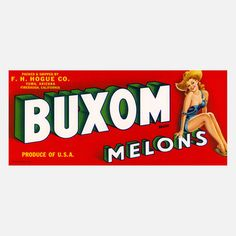 Buxom Melons Print 20x16 now featured on Fab.