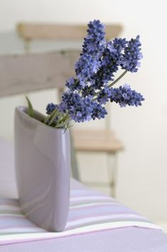 I love the scent of lavender: here a Fresh Lavender flower bouquet in a vase.