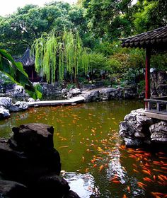 The Yuyuan Garden is believed to be over four centuries old and is brimming with Chinese culture and history. It features traditional rock and stone areas, dragon sculptures, and sacred water features, making these extensive gardens a stunning sight.