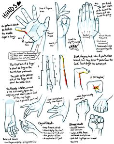 Ref: HANDS - Tutorial Anatomy: Muscle, Fat, and Bone 4 (hands edition) by rinayun Drawing Lessons, Drawing Techniques, Drawing Tips, Art Lessons, Life Drawing, Figure Drawing, Hand Drawing Reference, Drawing Hands, Anatomy Reference