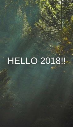 Goodbye 2017 Hello New Year Has Tiptoed In. Letu0027s Welcome The 365 Days It  Brings. Letu0027s Live Well With Love In Our Hearts Towards God And All People.