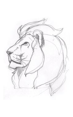 Pride (Lion Illustration) on BehanceYou can find illustration art drawing and more on our website.Pride (Lion Illustration) on Behance Sketchbook Drawings, Cool Art Drawings, Pencil Art Drawings, Drawing Sketches, Drawing Tips, Lion Drawing Easy, Drawing Drawing, Drawing Ideas, Drawing Tutorials