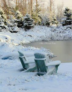 Aiken House & Gardens: And Winter Came......