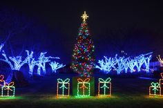 Meadowlark's Winter Walk of Lights | Lighting up your family's holiday season!