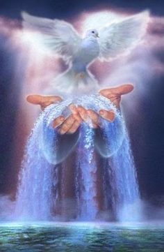 ~What does the Holy Spirit feel like?  It's an inner urge that can come gently or even forcefully to say words, connect people, or take action. The next time you feel the inner gut feeling to follow through on something, embrace it and let the Holy Spirit work through you.~ 1 Thessalonians 5:19 NLT Do not stifle the Holy Spirit.