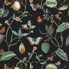 Lillian #wallpaper in #black from the Spring Lake collection. #Thibaut