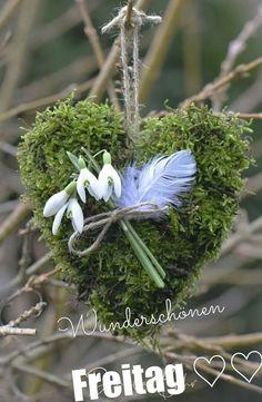 Hello Friday, Botany, Land Scape, Spring Time, Dandelion, Instagram, Flowers, Plants, Dani