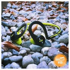 I've been searching for the perfect workout partner: a kicka$$ pair of wireless headphones. Did I find them? Check out my verdict on the  @Plantronics BackBeat FIT over on the blog (link in profile)! Have YOU had trouble finding the right pair of headphones? #bibchat #bibravepro #RunnerProbs #InstaRunners #werunsocial #RunAZ #RunEatTweetAZ by runner_blogger_az