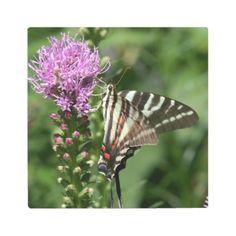 #photo - #Butterfly Metal Art Photo Print.