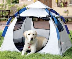 Give your tired friend her very own pup tent to relax in with Abo Gear's Instent Dog Haus portable pet shelter. Mesh air-vent windows offer ventilation and the fabric offers SPF 50 protection from harmful rays. abogear.com