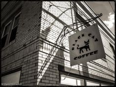 Shadow_Cat by David McCaskill on 500px, Portland, Maine