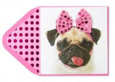 Pug With Pink Bow Valentine Card Pugs In Costume, Pet Costumes, Valentines Day Dog, Carlin, Cute Pugs, Diy Projects To Try, Peace And Love, Wall Tapestry, Puppy Love