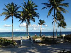 Hollywood North Beach Park Picture Beautiful Day Kicking Back And Sning Some Pics On Check Out Tripadvisor