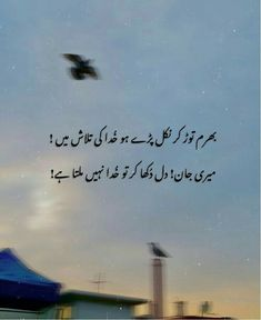 Positive Attitude Quotes, True Feelings Quotes, Pain Quotes, Poetry Feelings, John Elia Poetry, Best Quotes Ever, Poetry Lines, Snapchat Quotes, Rare Words