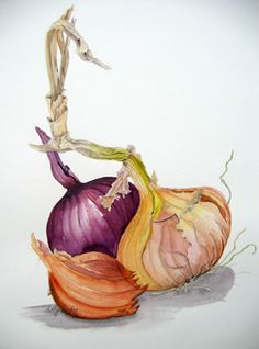 Sally Pinhey Botanical Illustration | Paintings