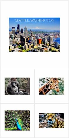 Scenic Canvas Prints & Posters