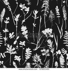 Vector seamless pattern with wild plants and leaves silhouettes, herbal background, floral illustration