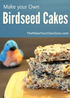 Save money and make your own homemade birdseed cakes with this simple recipe. Recipe makes 6 square cakes that fit perfectly in bird feeders. Homemade Bird Houses, Homemade Bird Feeders, Bird House Feeder, Diy Bird Feeder, Suet Cake Recipe, Recipe Recipe, Bird Suet, Suet For Birds, Pet Birds