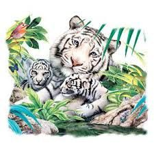 tiger and cubs tattoo - Google Search