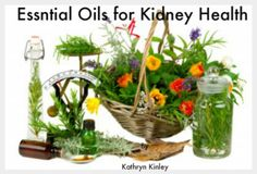Of all your vital organs, your kidneys are some of the busiest, with a very diverse job description. They are experts at multi-tasking, filtering wastes from your blood – over 200 quarts of blood pass through your kidneys every day, which remove over 2 quarts of waste products and water – all the while